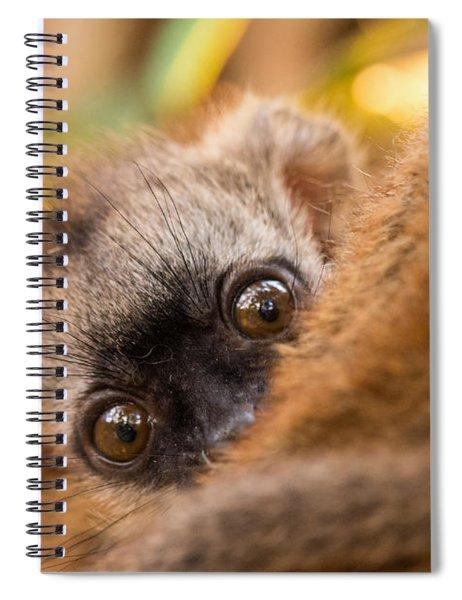 Peekaboo Spiral Notebook