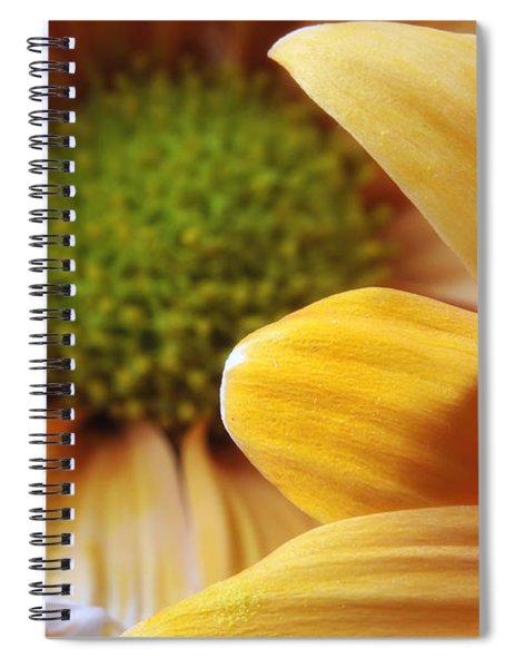 Peeking Through Spiral Notebook