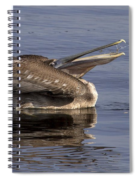 Pelican Fountain  Spiral Notebook