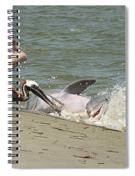 Pelican Steals The Fish Spiral Notebook