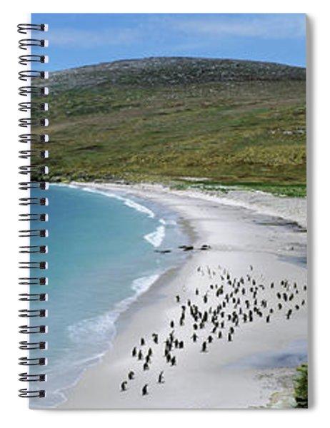 Penguins On Beach, New Island, Falkland Spiral Notebook