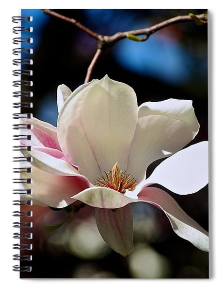 Perfect Bloom Magnolia Spiral Notebook