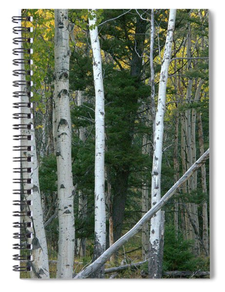 Perfection In Nature Spiral Notebook