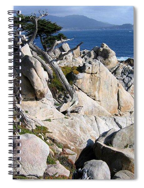 Pescadero Point Spiral Notebook