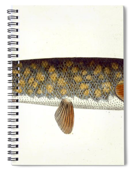 Pike Spiral Notebook