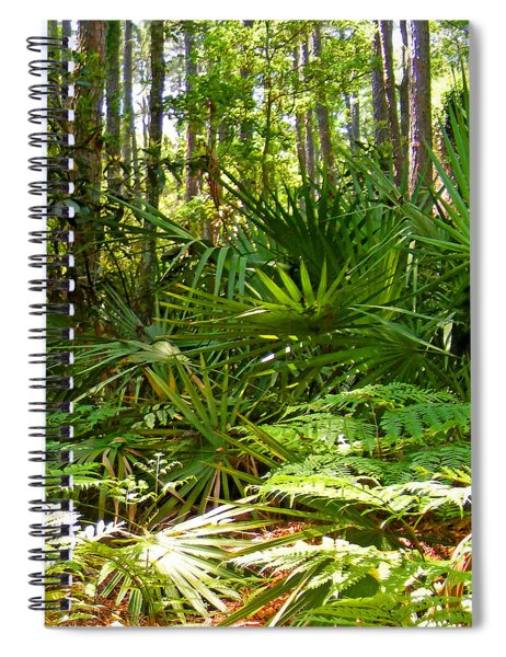 Pine And Palmetto Woods Filtered Spiral Notebook