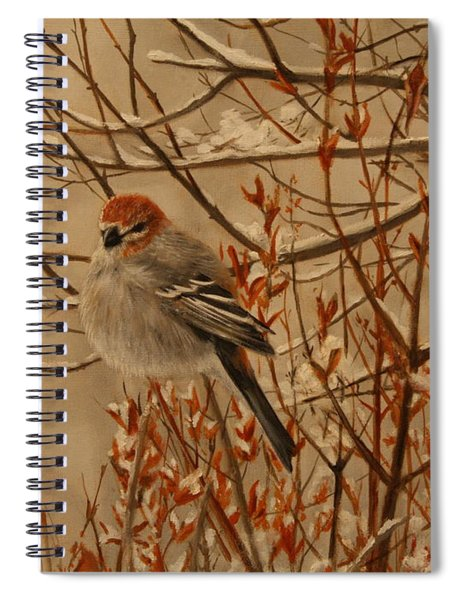 Pine Grosbeak Spiral Notebook