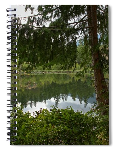 Pine Trees Over Starvation Lake Spiral Notebook