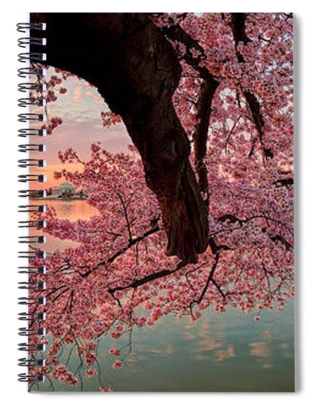 Pink Cherry Blossom Sunrise Spiral Notebook