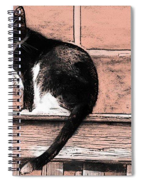 Pink Keys Kitty Spiral Notebook