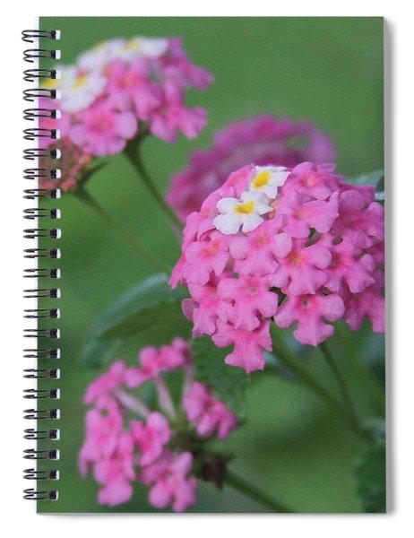 Pink Lantana 2 Spiral Notebook
