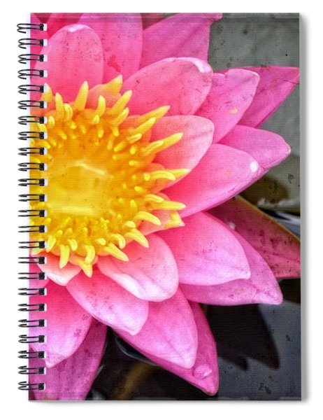 Pink Lotus Flower - Zen Art By Sharon Cummings Spiral Notebook