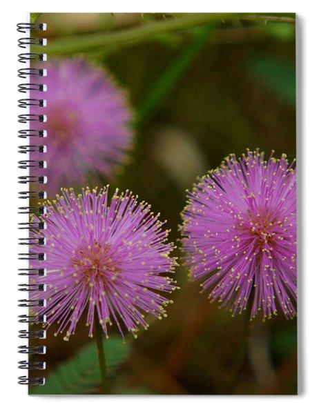 Pink Mimosa Spiral Notebook