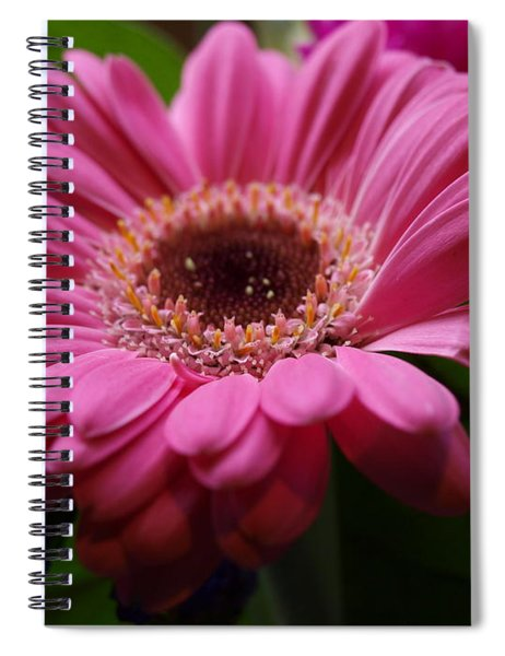 Pink Petal Explosion Spiral Notebook