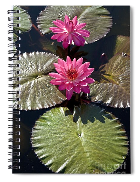 Pink Water Lily IIi Spiral Notebook