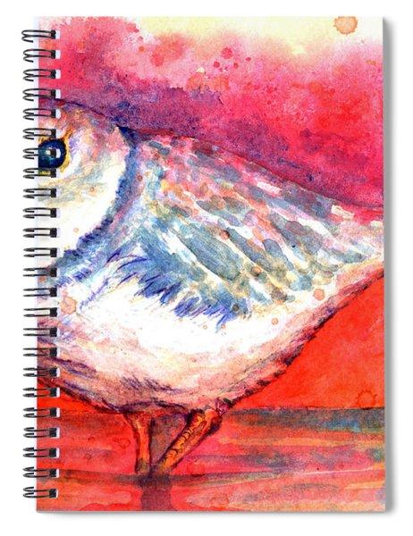 Pippa Spiral Notebook