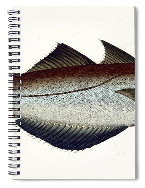 Pollack Spiral Notebook