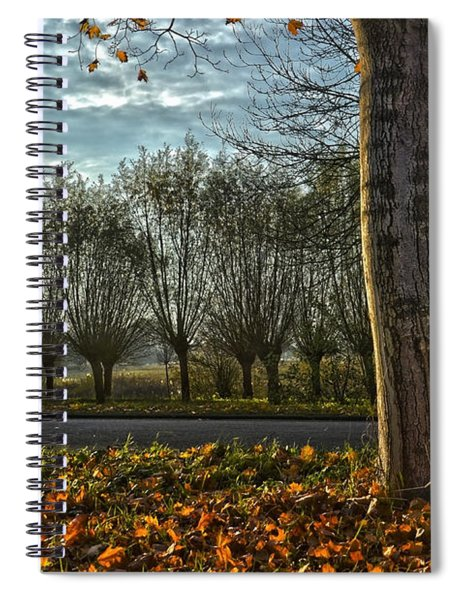 Pollard Willows In Rotterdam Spiral Notebook