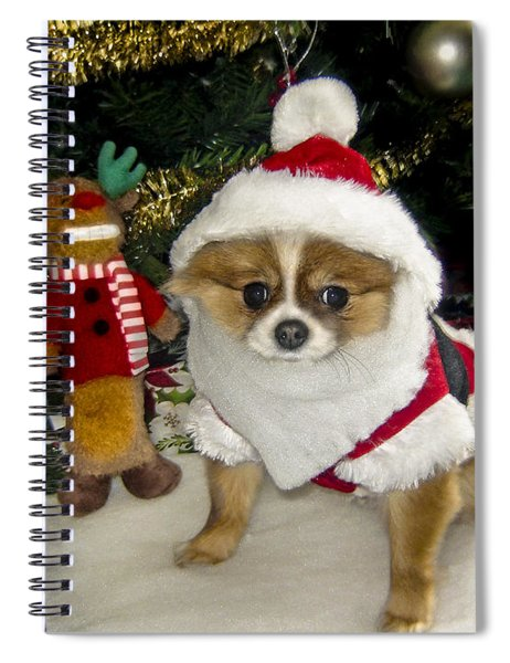 Pomeranian Santa Spiral Notebook