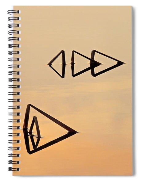 Pond Reeds Sunrise 2 Spiral Notebook