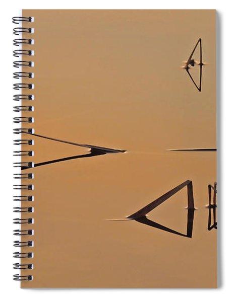 Pond Reeds Sunrise 3 Spiral Notebook