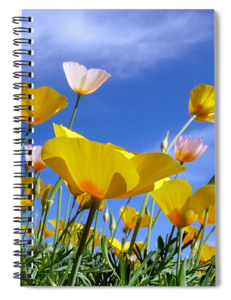 Poppies And Blue Arizona Sky Spiral Notebook