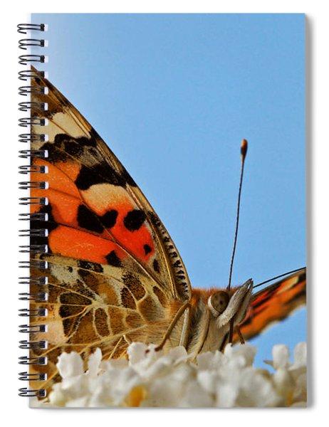 Portrait Of A Butterfly Spiral Notebook