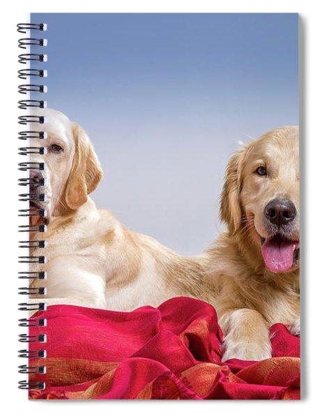 Portrait Of A Golden Retriever Spiral Notebook