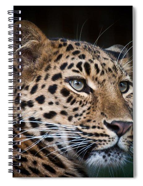 Portrait Of A Leopard Spiral Notebook