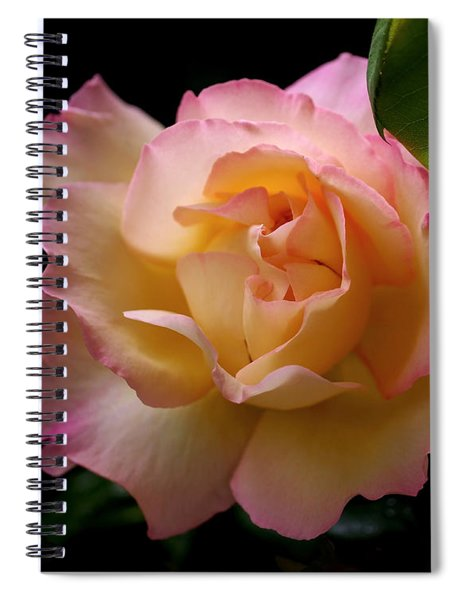 Portrait Of A Rose Spiral Notebook