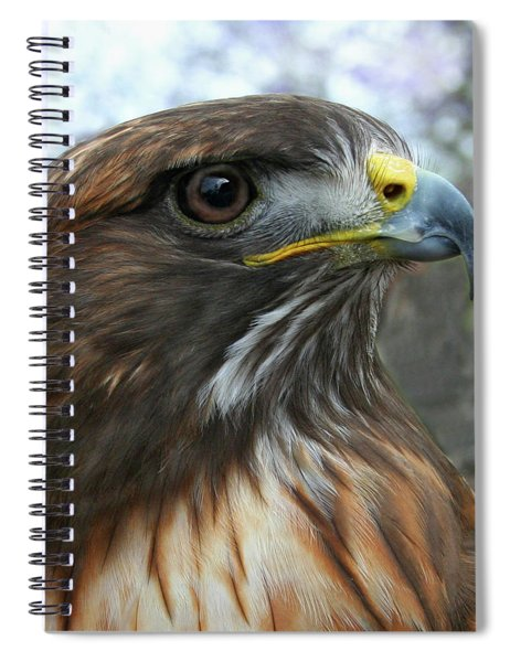 Portrait Of Red-shouldered Hawk Spiral Notebook