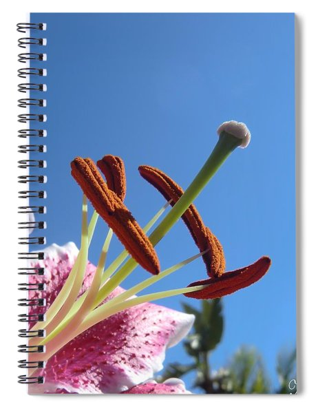 Possibilities 2 Spiral Notebook
