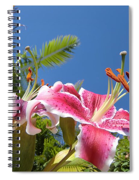 Possibilities Spiral Notebook