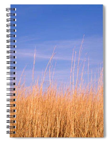 Prairie Grass, Blue Sky, Marion County Spiral Notebook