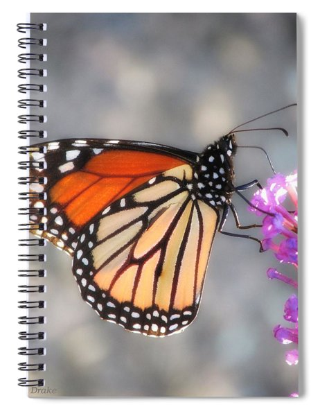 Preference For Pink Spiral Notebook