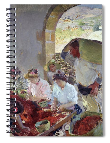 Preparing The Dry Grapes Spiral Notebook