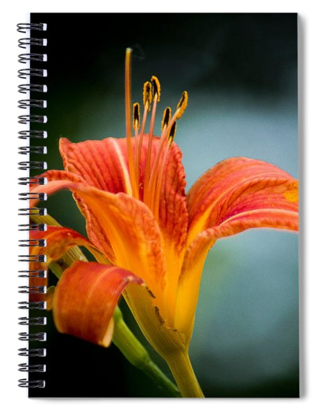 Pretty Flower Spiral Notebook