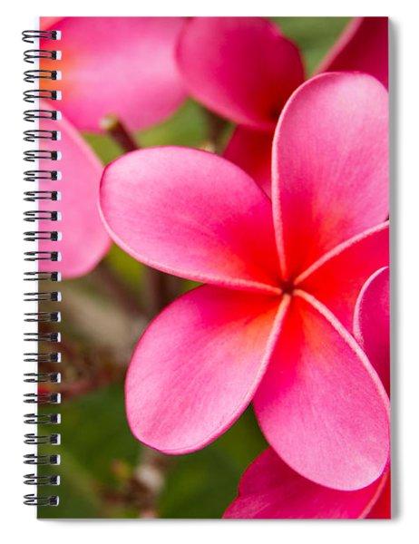 Pretty Hot In Pink Spiral Notebook
