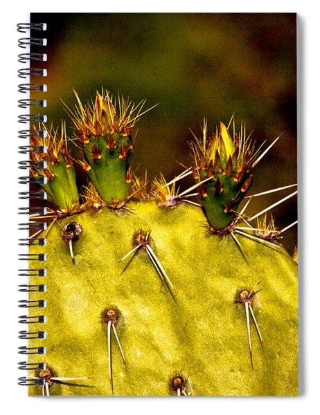 Prickly Pear Spring Spiral Notebook
