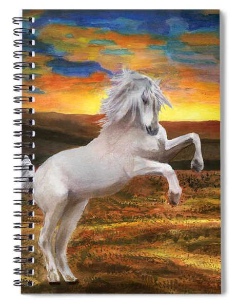 Prince Of The Fiery Plains Spiral Notebook