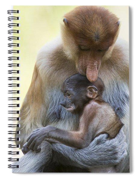Proboscis Monkey Mother Holding Baby Spiral Notebook