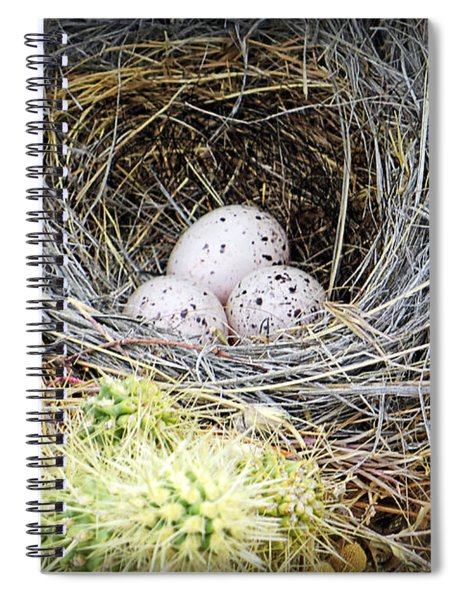 Protection By Cholla Spiral Notebook