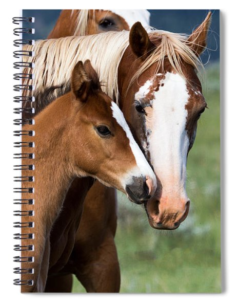 Proud Mommy Spiral Notebook