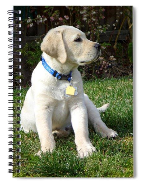 Proud Yellow Labrador Puppy Spiral Notebook