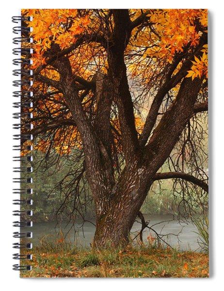 Provo Autumn #1 Spiral Notebook