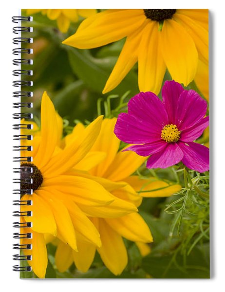 Purple And Yellow Flowers Spiral Notebook