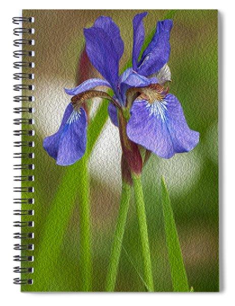 Purple Bearded Iris Oil Spiral Notebook