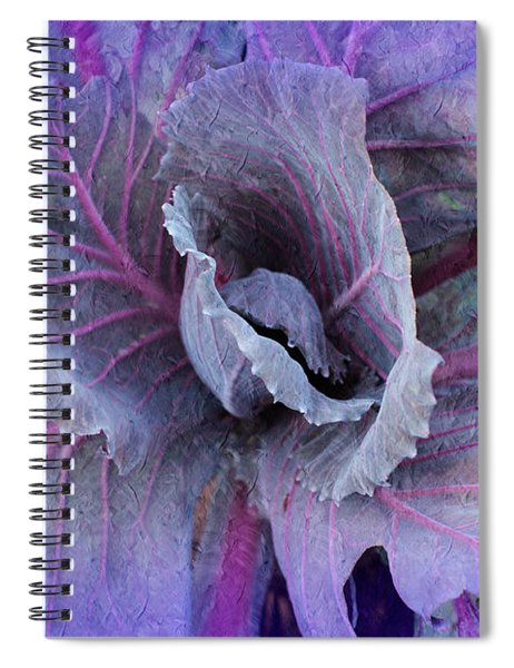 Purple Cabbage - Vegetable - Garden Spiral Notebook