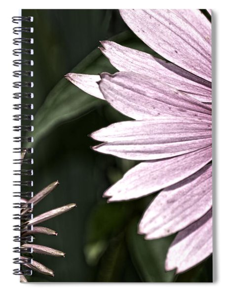 Purple Coneflower Imperfection Spiral Notebook