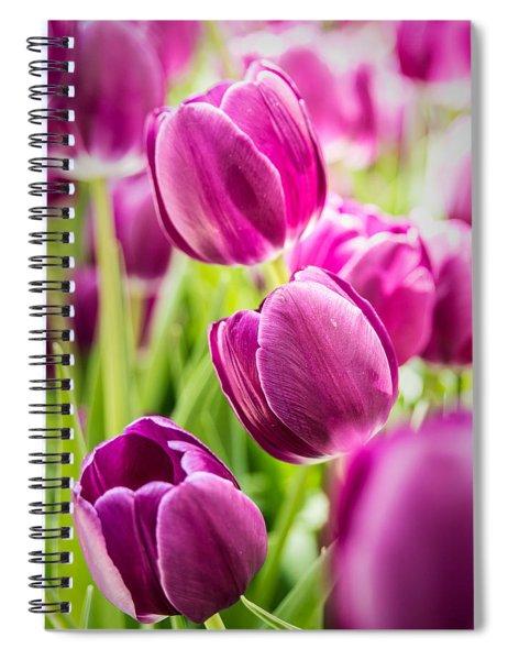 Purple Tulip Garden Spiral Notebook